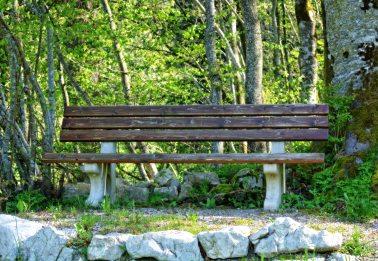 adventure-bench-daylight-257408